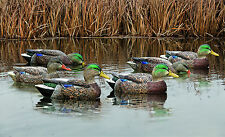 Avian-X Top Flight Early Season Mallards Waterfowl Hunting Duck Decoys New!