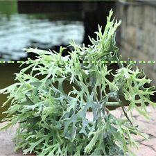 35cm Artificial Deer Grass Branch Plant Wedding Home Church Decor Green