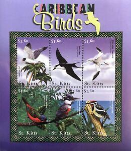 ST KITTS CARIBBEAN BIRDS STAMP SHEET 2001 mnh SEA BIRDS MARINE LIFE GULL TERN