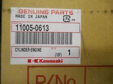 New Kawasaki OEM Cylinder Jug 11005-0613 KX250F KX 250F KXF 250 2013 2014 13-14