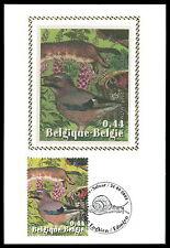 BELGIEN MK 2004 VÖGEL VOGEL BIRDS MAXIMUMKARTE CARTE MAXIMUM CARD MC CM al84