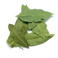 Bay Leaf | Organic Pure Fresh Premium Quality Laurus Nobili's Palestinian