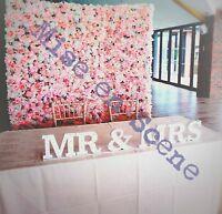 Flower Wall Backdrop Screen Photo shoot Wedding/ Event Pink Flower wall *HIRE*