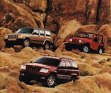 Big 1999 Jeep Catálogo/CATALOG con color Gráficas: Wrangler,GRAN / CHEROKEE,4wd