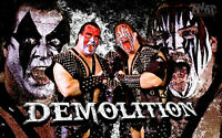Demolition Ax & Smash Wrestling Art Glossy Print 8x10 WWF WCW Repo Man