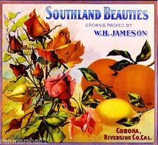 Corona Southland Beauties Rose Flowers Orange Lemon Fruit Crate Label Art Print