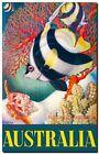 "Vintage Travel Poster CANVAS PRINT Australia Reef Fish & Coral 16""X12"""