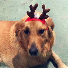 Pet Cat Dog Cap Hat for Animal Christmas Elk Deer Costume Toy Pet Pro