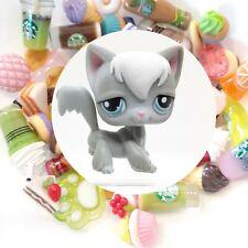 Authentic Littlest Pet Shop Gray Longhair Cat 345 + 🌭 *Suprise Food Items*🥤