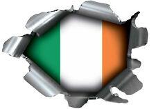 SPEED DEMONS PRIDE BURST STICKER SELF ADHESIVE CAR LAPTOP RIP TORN IRELAND EIRE