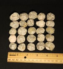 """Group of 25 - 0.75"""" Diameter Break Your Own Mexican Trancas Geodes"""