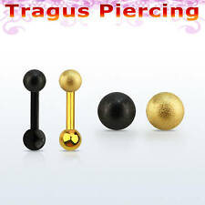 PVD plated surgi Tragus Helix Bar Cartilage Earring Bone End Bio Stud Pierce 6mm