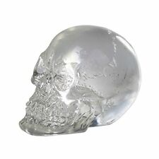 Mini Clear Skull Figurine Halloween Crafting Part