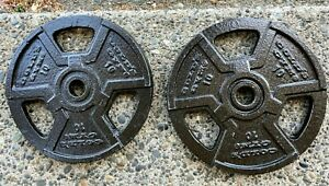 """GOLDS GYM 10lb Barbell Plates Cast Iron 1"""" Hole, Near Mint Condition 20lb total"""