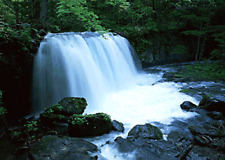 NATURAL SOUNDS TRANQUIL WATERFALL CD RELAXATION AID, NATURE, FLOWING WATER