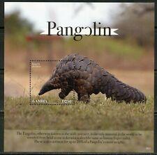 Gambia 2020 Pangolin Souvenir Sheet Mint Never Hinged