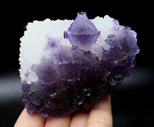 "Rare ladder-like purple ""phantom"" fluorite & crystal Mineral Specimen/China"