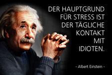 Albert Einstein Spruch 17 Blechschild Schild gewölbt Metal Tin Sign 20 x 30 cm