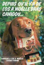 ▬► PUBLICITE ADVERTISING AD PATEE CANIGOU CHIENS