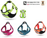 Original Truelove Soft Padded Adjustable 3M Reflective Dog Puppy Harness
