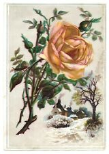 """""""LION COFFEE"""" (1885) """"EMBOSSED ROSE"""" Large Trade Card WOOLSON SPICE Toledo, Ohio"""