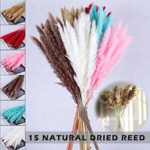 15PCS Artificial Natural Dried Pampas Grass Flower Bunch / Bouquet Wedding Decor
