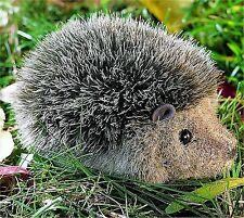 kösener 3470 - Hérisson petit 12 cm animal à câliner en Peluche