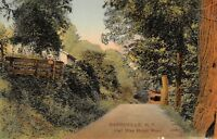Barryville New York~Half Way Brook Road~House & Wood Fence~1907 Artino Postcard