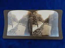 STEREOVIEW - H.C. WHITE CO - 4911 PALACE GARDENS / FREDERLKSBORG - TOP !