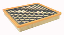Air Filter Pentius PAB10685
