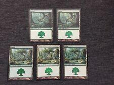 MTG *FOIL* Forest Land Card Champions of Kamigawa  Edition #304 - X5 Nm-Lp