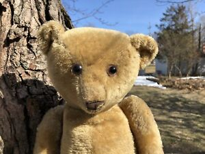Sweet Well Loved Antique Teddy Bear