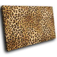 Animal Cheetah Skin Fur  Funky Animal Canvas Wall Art Large Picture Prints