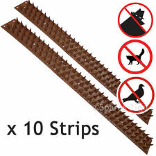 Fence Wall SECURITY SPIKES Intruder Burglar Deterrent Repellent Bird Cat Guard