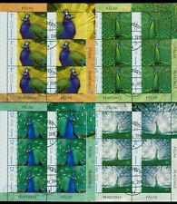 2019 Peafowl,Indian/Blue & White,Congo/African,Green-Peacock,Romania,KB/VFU