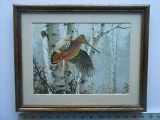 David Maass WOODCOCK framed 11X14  3.5na513