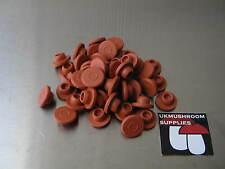 13mm self healing butyl rubber stoppers serum vials - mushroom Injection ports