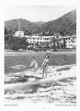"*Postcard-""Aquaplaning"" /Wide Wooden Boards/ *Catalina Island, CA (A37-1)"