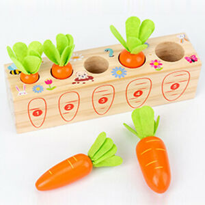 Wooden Toys Baby Montessori Toy Set Pulling Carrot Shape Matching Size TAY