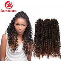 Aosome 18 inches Ombre Curly Twist Hair Water Wave Crochet Braids Extensions 75g