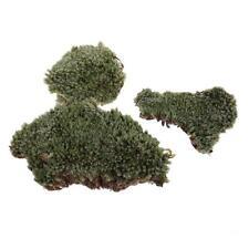 Sand Table Armor Lichen Moss Model Layout per 1/35 Scale Landscape