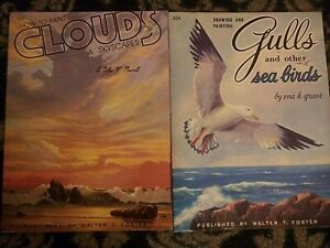 2 Books Drawing/Painting Clouds Skyscapes & Gulls other Sea Birds Walter Foster