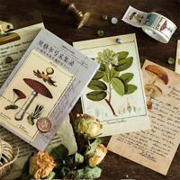 30pcs Letter Writing Paper Animals Plants Lomo Cards Postcards Message Pad