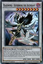 BLACKWING - SILVERWIND THE ASCENDANT - (LC5D-EN134) - Super - 1st - Yu-Gi-Oh 5Ds