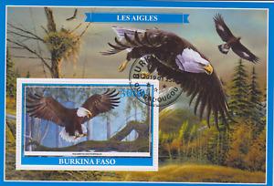 Bird Burkina Faso 2019 Postmarked 2934