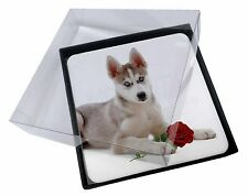 4x Siberian Husky with Red Rose Picture Table Coasters Set in Gift Box, AD-H54RC