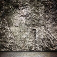 Stone Wall Brick Floor Photography Backgrounds 10x10ft Vinyl Photo Backdrops