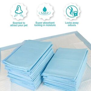 Heavy Duty Dog Puppy Large Training Wee Pads Floor Toilet Mats 58x58cm 100pk+5