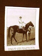 Cavallo Cranach nel 1928 Scuderia Tesio Vince il Premio Milano a San Siro