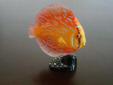 NEW Japan KAIYODO FURUTA New Choco Egg  Miniature Pet Animal DISCUS FISH